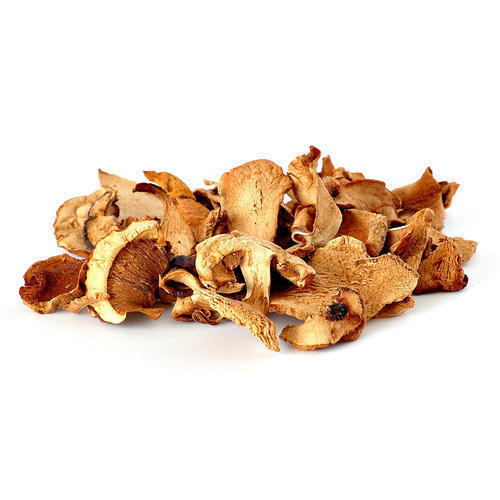 Image of Dried Oyster Mushrooms (20g)