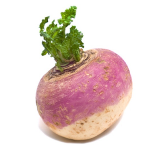 Image of Turnip (1 = 125g Approx)