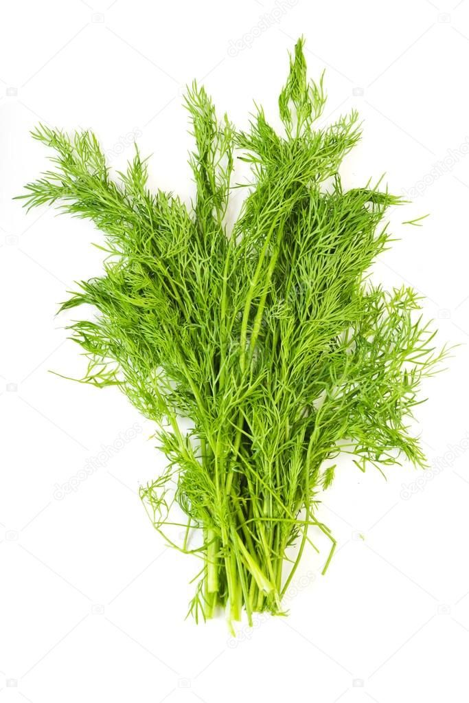 Image of Large Bundle of Fresh Dill (50g)