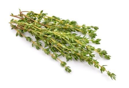 Image of Large Bunch of Fresh Marjoram (50g)