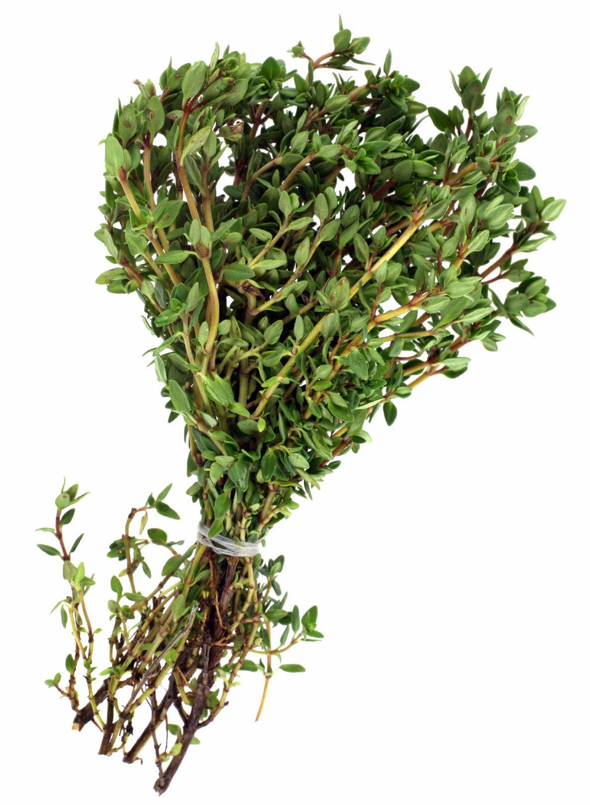 Image of Large Bundle of Fresh Thyme (50g)