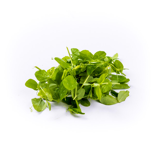 Image of Punnet of Fresh Pea Shoots (100g)