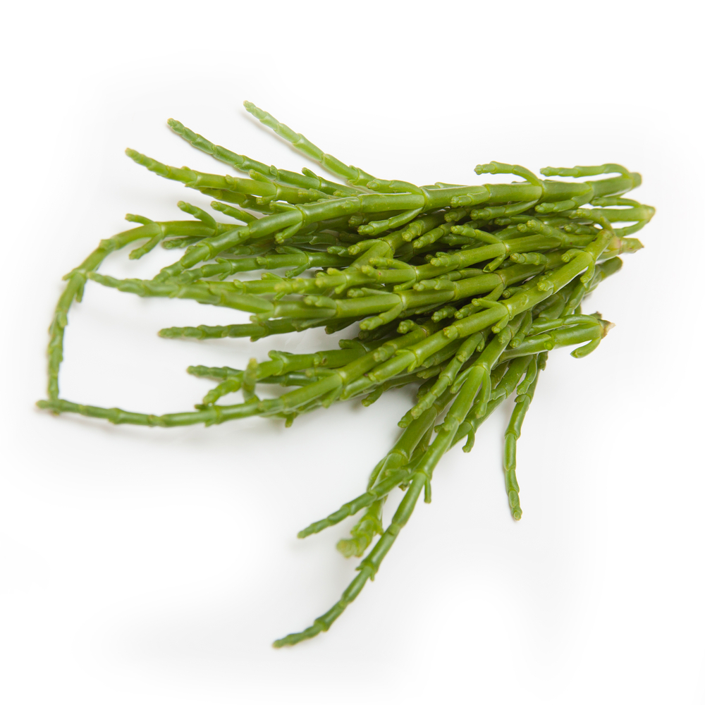 Image of Samphire From the Herb Table (50g)