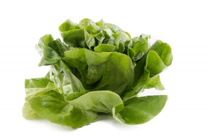 Image of Round Lettuce