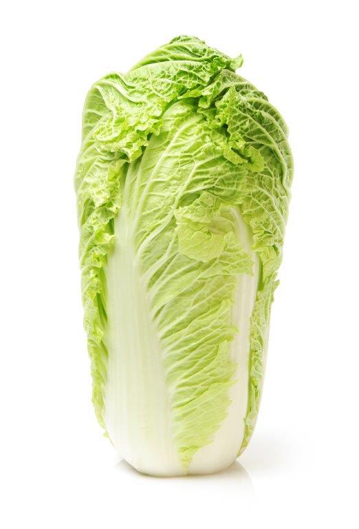Image of Large Chinese Leaf Lettuce