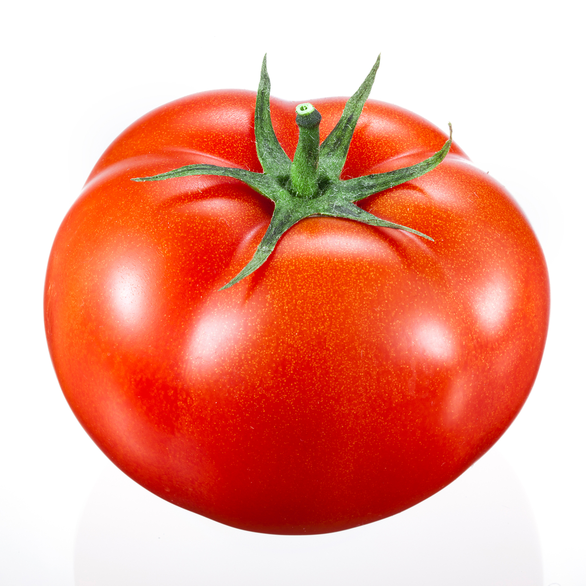 Image of Large Beef Tomato