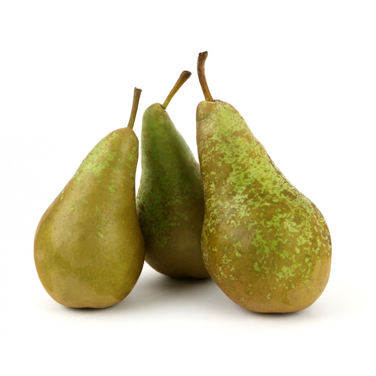 Image of Conference Pear