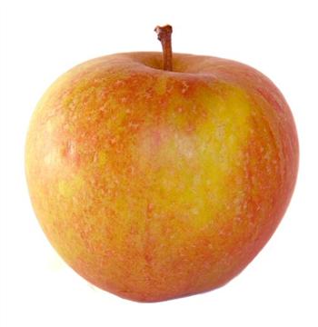 Image of Cox's Apple (Minimum Order 3)