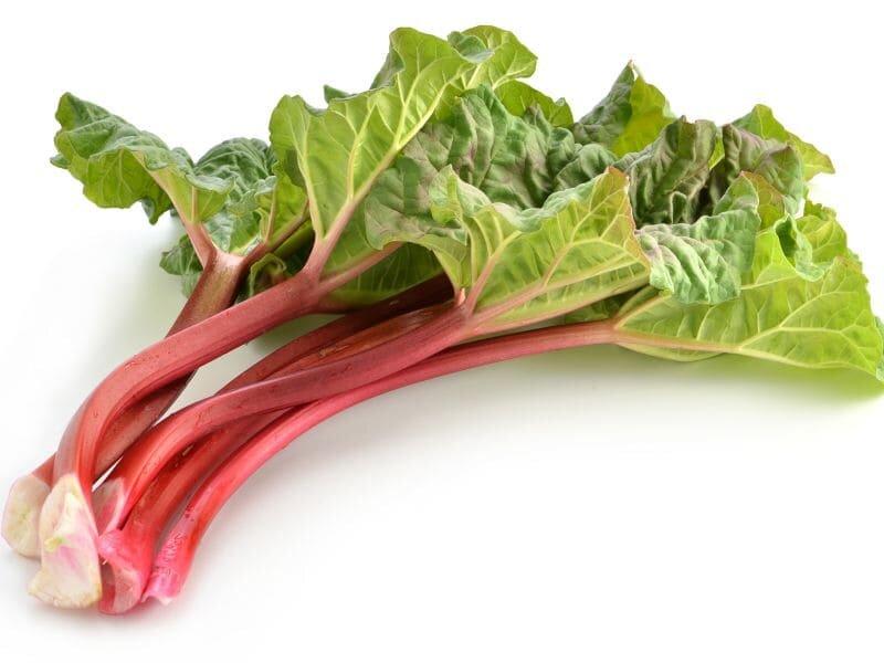 Image of Rhubarb