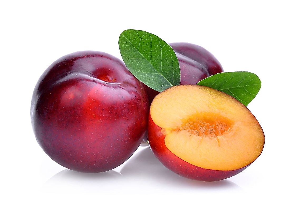 Image of Red Plum (50g)