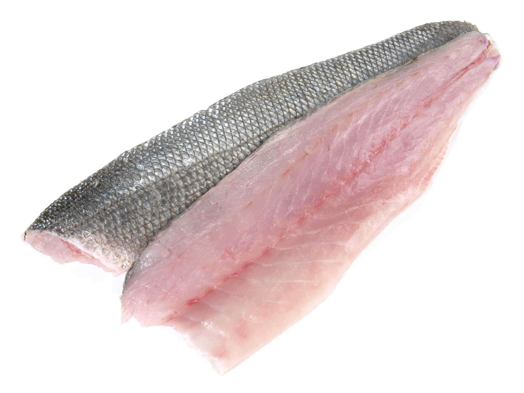 Image of Sea Bass Fillets