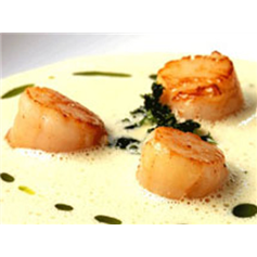 Image of Hand Dived Scallops (50g)